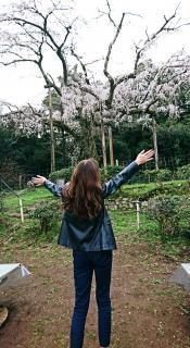 春がきたぁ〜♪画像