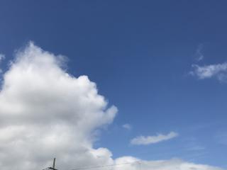 いいお天気(^^)画像
