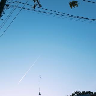 朝のお散歩♪画像