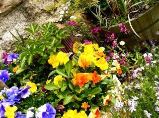 春っぽい画像