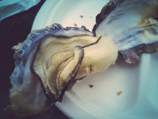 岩牡蠣画像