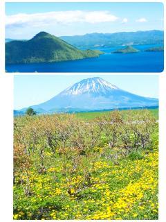 北海道旅行画像