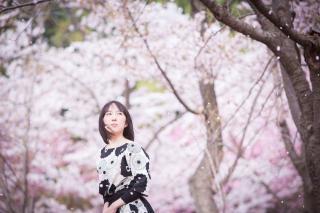 桜と私in北海道画像