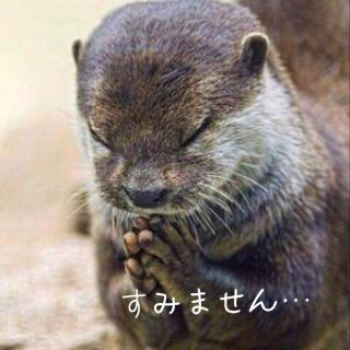 ごめんなさい(ノ_<)画像