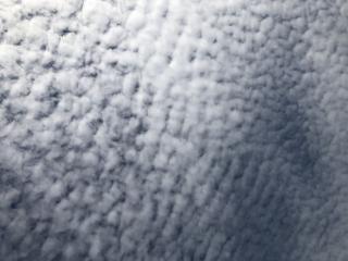 鱗雲☁画像