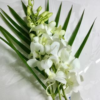 お花を飾ってます♪画像