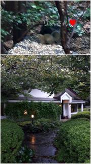 伊豆高原の「ブルーノート」ならね「バターノート」♪画像