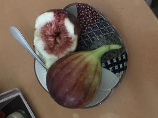 果物大好き画像