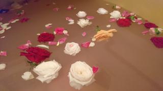 薔薇風呂〜🌹画像