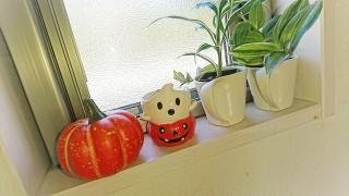 10月 ハロウィン画像