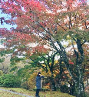 秋めいてきた箱根♪画像