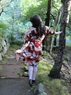 旧古川庭園で撮影しました画像