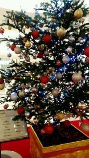 クリスマスツリー♪画像