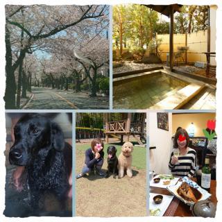 春満喫♪温泉旅行ってきました(*^^*)