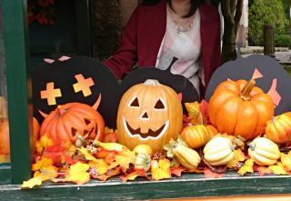 かぼちゃは嫌いだけど⁉画像