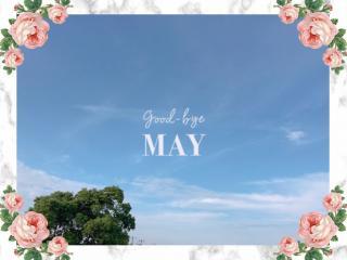 5月最後の日画像