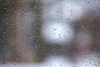 今日は雨画像