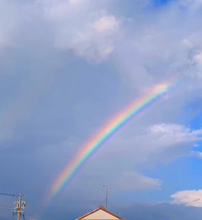 虹☆☆画像