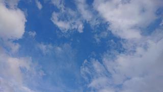 今日は台風ですね…(´・ω・`)画像