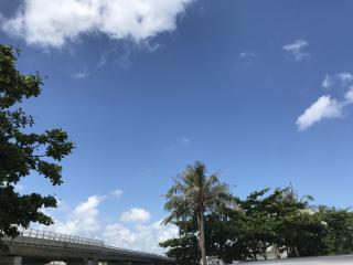 夏の空画像