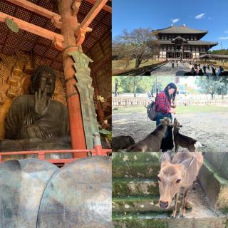 古都奈良画像