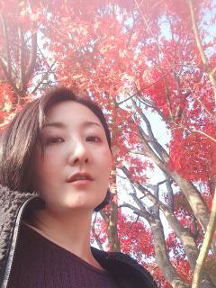 美しい紅葉画像