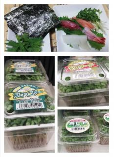 野菜の進化