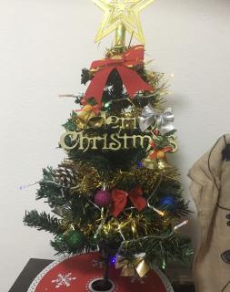 クリスマスツリー☆画像