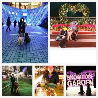メリークリスマス(☆∀☆)