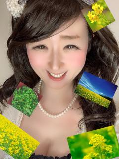 🍀菜の花( ´ ▽ ` )🍀画像
