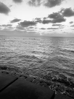 愛の海に画像