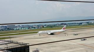 飛行機( *´艸`)画像