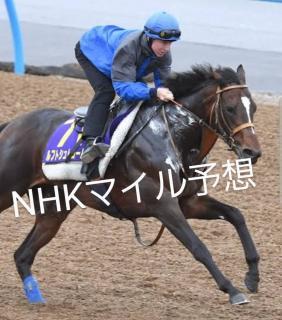 NHKマイルC予想画像