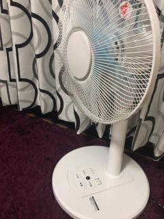 扇風機登場〜画像