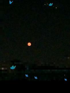 お月さんが画像