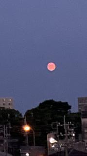 赤い月画像
