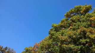 真っ青な空画像