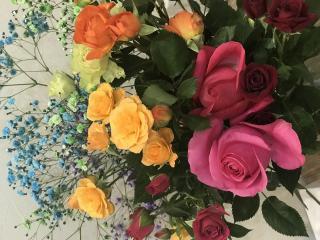 大好きな薔薇をカラフルに画像