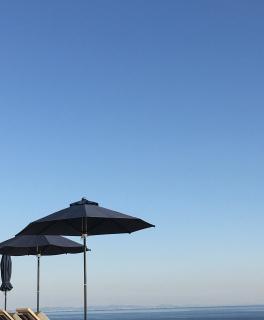 井の中の蛙。大海を知らず。されど空の青さを知る。画像