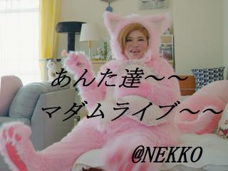 ★2月22日はNEKKOさんとお過ごし〜♪w★画像