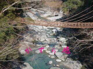 かづら橋画像