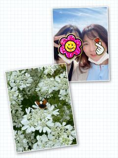 ☆久しぶりのブログ☆画像
