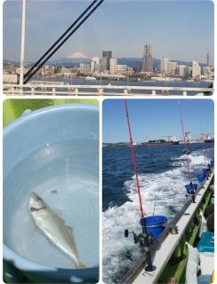 釣り日和画像