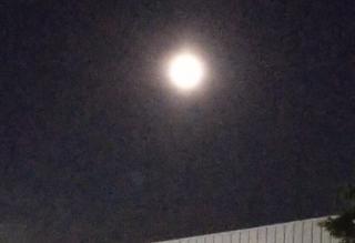 月が綺麗ですね(*´∀`)♪画像