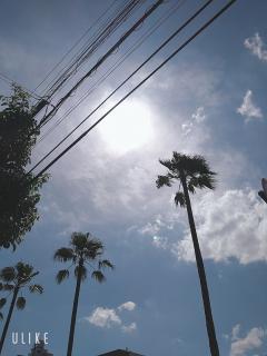 気持ちいいぐらいの晴天!画像