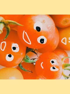 ミニトマトの凄さ。画像