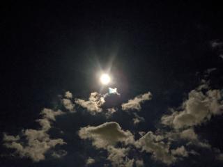 満月🌕画像