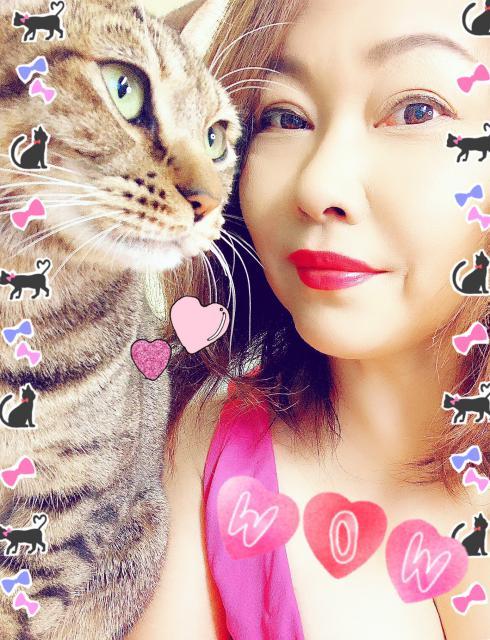 おばさまと猫(自虐・笑)