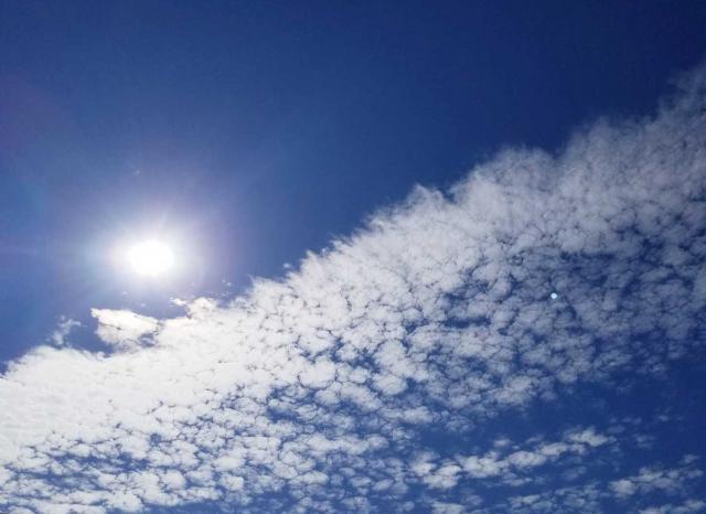 この太陽を借りて(*^-^*)